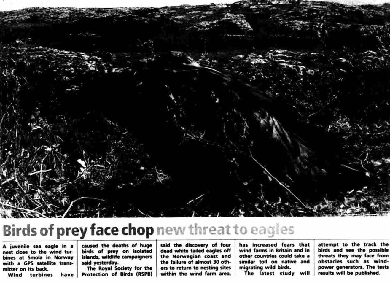 P.10 January 2006: Irish Independent